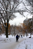 一个降雪的冬天的储蓄图象在波士顿,马萨诸塞,美国 免版税库存图片