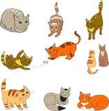 一个集合的例证与图象的上色了猫 向量 库存照片