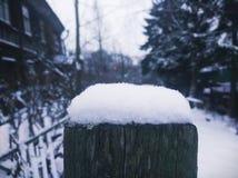 一个雪杯子 免版税库存图片