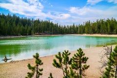 一个非常小透明的湖在黄石国家公园,怀俄明森林里  免版税库存照片