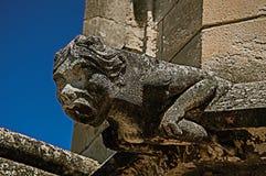 一个面貌古怪的人的特写镜头在阿维尼翁的教皇的宫殿的屋顶的 库存图片