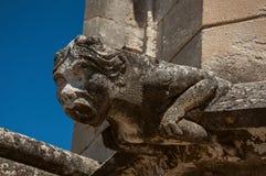 一个面貌古怪的人的特写镜头在阿维尼翁的教皇的宫殿的屋顶的 免版税库存图片