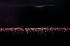 一个音乐会的观众在晚上 图库摄影