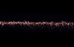 一个音乐会的观众在晚上 库存照片