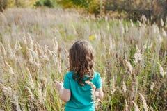 一个领域的小美丽的深色的女孩与 免版税库存图片