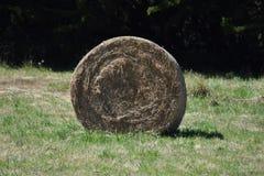 一个领域的干草堆在布里坦尼,法国 免版税库存照片