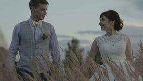 一个领域的新婚佳偶在日落 股票录像