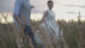 一个领域的新婚佳偶在日落 影视素材