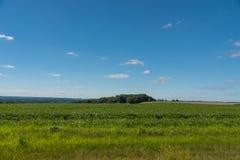 一个领域的看法在伊利诺伊国家边的 图库摄影