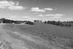 一个领域的看法在伊利诺伊国家边的 库存图片