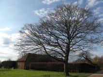 一个风景农场 免版税库存照片