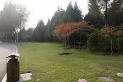 一个风景点在公园 免版税库存照片