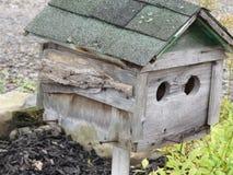一个饱经风霜的鸟舍和一棵美丽的植物 免版税库存图片