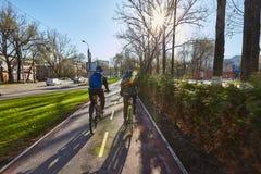 一个骑自行车者在城市沿自行车道路移动 环境友好的运输方式 回到视图 免版税库存照片