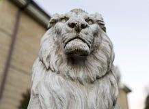 一个高尚和豪华男性狮子石头雕象的画象在statel的 免版税图库摄影
