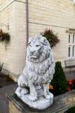 一个高尚和豪华男性狮子石头雕象的画象在statel的 免版税库存图片