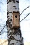 一个鸟舍在森林里在早期的春天 库存照片