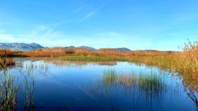 一个鸟观测所的全景,沼泽地自然公园La的Marjal在Pego和奥利瓦山脉 股票录像