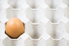 一个鸡蛋回收载纸盘 免版税库存照片