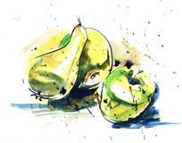 一个黄色梨的手拉的真正的水彩和墨水剪影和 皇族释放例证