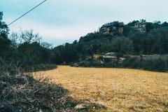 一个黄色草甸的风景在与山的一多云天 免版税图库摄影