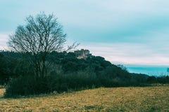 一个黄色草甸的风景在与山的一多云天 免版税库存图片