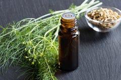 一个黑暗的瓶茴香精油用新鲜的茴香 免版税库存图片