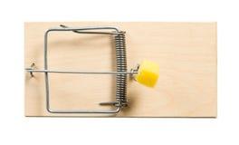 一个鼠标陷井用干酪 免版税库存照片