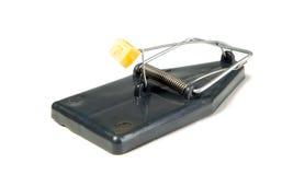 一个鼠标陷井用干酪 免版税库存图片