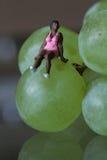 一个黑人妇女的缩样坐葡萄 库存照片