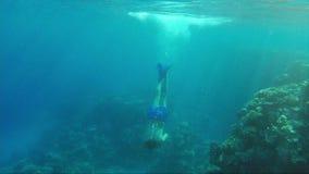 一个年轻人潜水入有面具和管的海 在太阳犁美好的光芒对底部的,那里 影视素材