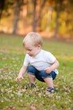 一个年轻小孩孩子户外采摘三叶草花。bo 免版税库存照片