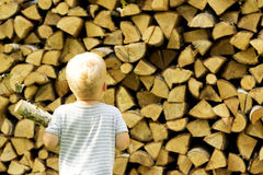 一个年小孩运载木柴后面视图 木柴Backgorund  免版税库存图片