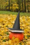 一个黑巫婆帽子和一本书在一个大南瓜安置的一件黑夹克反对风景背景 免版税库存照片
