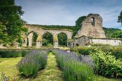 一个900年修道院的废墟 免版税库存照片