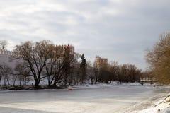 一个冻池塘的全景在Novodevichy女修道院的古老墙壁的附近 莫斯科 俄国 库存图片