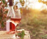 一个玻璃和瓶玫瑰酒红色在秋天葡萄园里 免版税库存图片