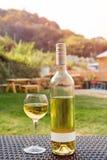 一个玻璃和瓶白葡萄酒在木柳条桌上的葡萄园里 收割期,野餐,费斯特题材 免版税库存照片