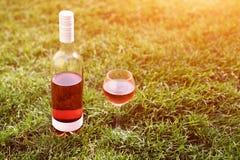 一个玻璃和瓶红色或玫瑰酒红色在绿草的葡萄园里 收割期,野餐,费斯特题材 库存图片