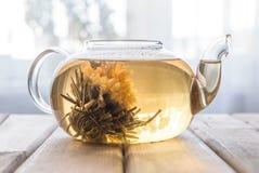 一个玻璃茶罐用在木背景的花中国茶在窗口前面 库存图片