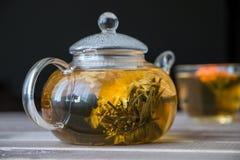 一个玻璃茶罐用花中国茶和绿茶盖帽在木桌上的在黑暗的背景前面 库存照片
