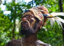 一个头目Yaffi的画象盛装的 新几内亚海岛, 库存图片
