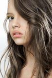 一个年轻美丽的青少年的女孩的秀丽画象 库存照片