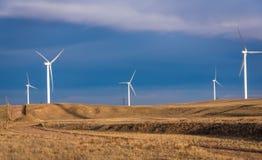 一个黄色领域的风轮机农场,草甸,与云彩的明亮的蓝天背景的 图库摄影