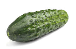 一个绿色黄瓜的特写镜头 在白色背景的一个整个和新鲜的黄瓜 健康沙拉的鲜美菜 库存照片