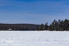 一个冻Eagle湖 图库摄影