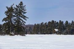 一个冻Eagle湖 库存图片