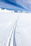 一个backcountry滑雪者的滑雪轨道大g的新鲜的雪的 免版税库存图片