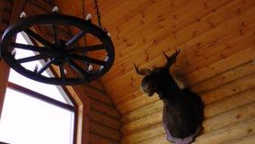 一个huting的房子鹿头 免版税库存图片