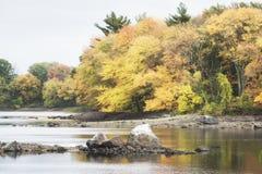 一个New England湖和森林的一张减速火箭的影片样式照片秋天的 免版税库存图片